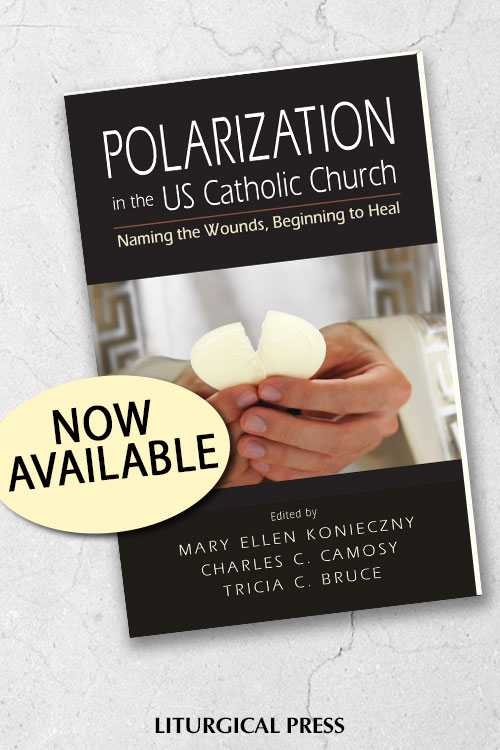 social-graphic-polarization-4665